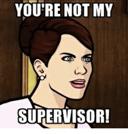 youre-not-my-supervisor-30294035